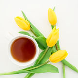 Yellow Tulips and tea mug isolated on white background. Floral background. Flat lay. Top view. Colorful flowers and tea mug on white background. Flat lay Stock Photography