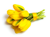 Yellow tulips tied up with a ribbon Royalty Free Stock Images