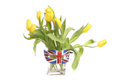 Yellow tulips in a vase with british mask Royalty Free Stock Photography