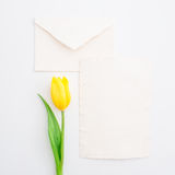 Yellow tulips and vintage paper cards isolated on white background. Flat lay, Top view. Royalty Free Stock Images