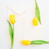 Yellow tulips and vintage paper cards isolated on white background. Flat lay, Top view. Stock Image