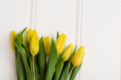 Yellow tulips on white boards Royalty Free Stock Photo