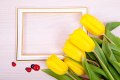Yellow tulips and white frame. Card Royalty Free Stock Photo