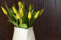 Yellow tulips in white jug Stock Photos