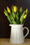 Yellow tulips in white jug Royalty Free Stock Photo