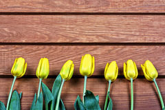 Yellow tulips on a wooden background Royalty Free Stock Photo