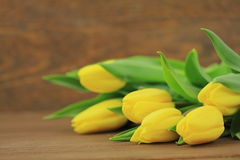 Yellow tulips. On wooden background Royalty Free Stock Photos