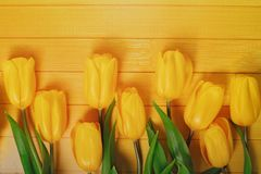 Yellow tulips on wooden background. Royalty Free Stock Photos