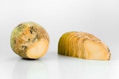 Yellow Turnip Stock Photography