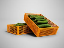 Yellow two plastic box with zucchini front view 3d render on gray background with shadow stock illustration
