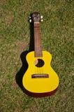 Yellow ukulele 01. Yellow ukulele placed on a green lawn Royalty Free Stock Image