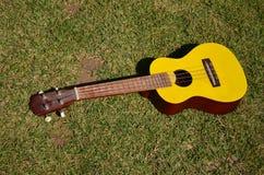 Yellow ukulele 02. Yellow ukulele placed on a green lawn Stock Photos