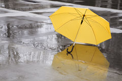 Yellow umbrella Stock Photos