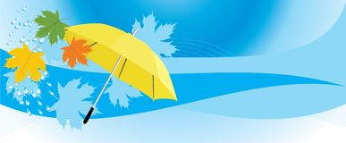 Yellow umbrella and maple leaves. Banner Royalty Free Stock Image
