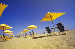 Yellow Umbrellas and Beach Chairs, Ventura, California Royalty Free Stock Image