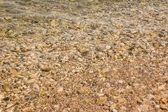 Yellow underwater peeble texture background.Small stones under the water surface.Various colorful wet pebbles texture as Royalty Free Stock Photo
