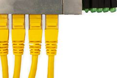 4 yellow UTP patch cords connected in ethernet switch, with top view. Isolated on the white background Royalty Free Stock Image