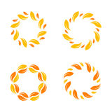 Yellow vector  leafs border. Stylish circle design. Stock Photo