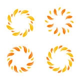Yellow vector  leafs border. Stylish circle design. Stock Photos