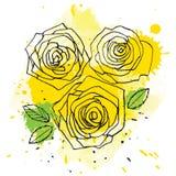 Yellow vector roses Royalty Free Stock Photos