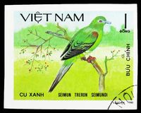 Yellow-vented Green-pigeon (Treron seimundi), Doves serie, circa 1981. MOSCOW, RUSSIA - SEPTEMBER 26, 2018: A stamp printed in Vietnam shows Yellow-vented Green stock image