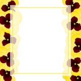 Yellow Viola Garden Pansy Flower Banner Card Border. Vector Illustration.  royalty free illustration