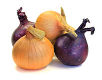 Yellow and violet onions (isolated) Royalty Free Stock Photo