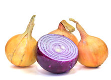 Yellow and violet onions (isolated) Royalty Free Stock Image