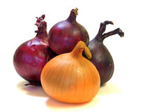 Yellow and violet onions (isolated) Stock Photo
