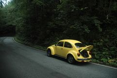 Yellow VW Beetle 1302 Royalty Free Stock Photography