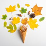 Yellow waffle cone with dried leaves of autumn leaves on a white background, flat lounger, top view.Art. Minimal rustic minimalism fall decor holiday card royalty free stock photos