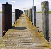 Yellow, Walkway, Wood, Boardwalk stock image