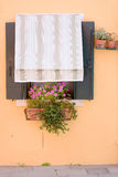 Yellow wall and curthain covered window of a home, flowers Stock Photography