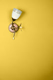 Yellow Wall Flower Lamp