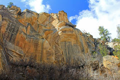 Yellow wall of Lick Wash. Eroded sandstone wall in Lick Wash Canyon Stock Image