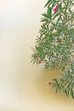 Yellow wall with oleander bush Stock Images