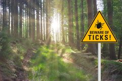 Attention beware of ticks. Yellow warning sign `beware of ticks` at a sunny clearing in the forest stock image