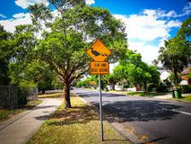 Warning sign driving slow down for Ducks crossing. A yellow Warning sign driving slow down for Ducks crossing royalty free stock photos