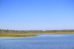 Yellow Water Billabong Royalty Free Stock Photography
