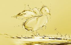 Yellow Water Chick royalty free stock images