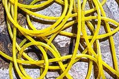Yellow water hose Stock Image