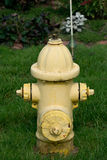 Yellow water hydrant Royalty Free Stock Images