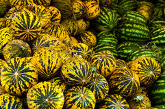 Yellow Water Melons Stock Photo