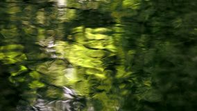 Yellow water reflections. Yellow and green water reflections on the surface of a creek stock video footage