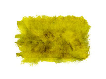 Yellow watercolor abstract background Royalty Free Stock Photography