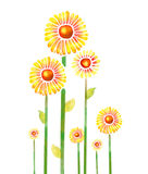 Yellow watercolor flowers Royalty Free Stock Image