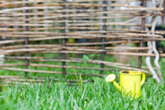 Yellow watering can on green grass wicker fence Royalty Free Stock Image