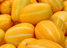 Yellow watermelon. A group of korean yellow watermelon Stock Image