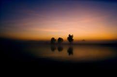Yellow Waters Sunrise Stock Photo