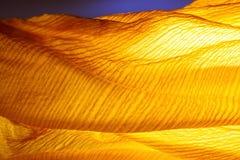 Yellow wave. Stock Image